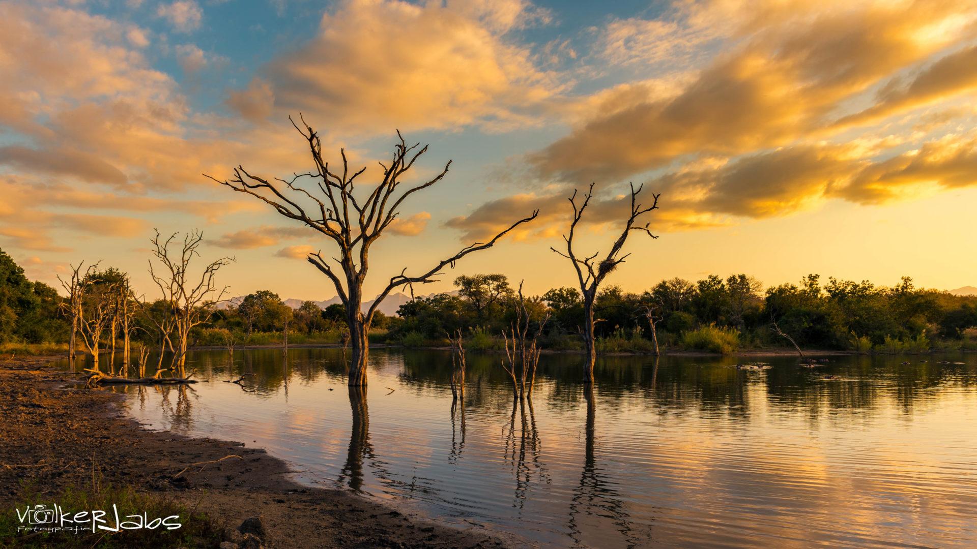 landscape_national_park